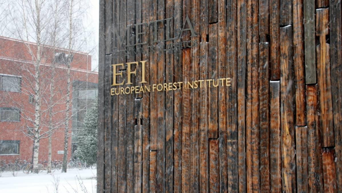 Euroopan metsäinstituutti Joensuu
