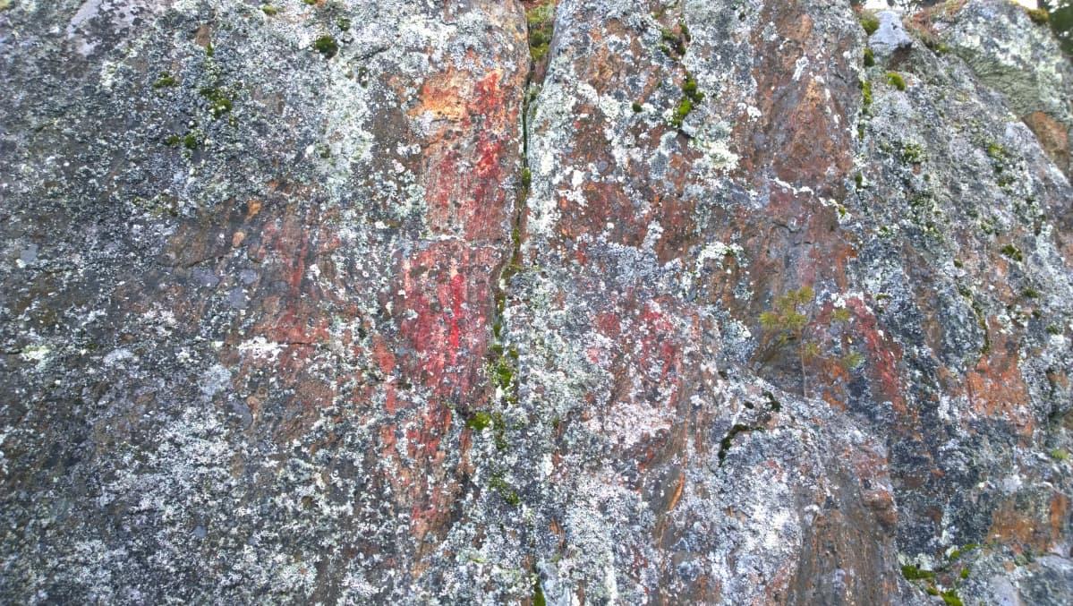 Ennestään tuntematon kalliomaalaus Leppävirran Pöyhönsaaressa.