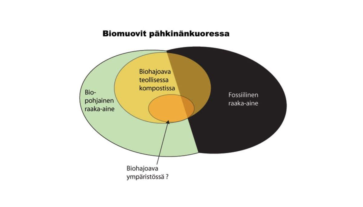 Taulukko biomuoveista