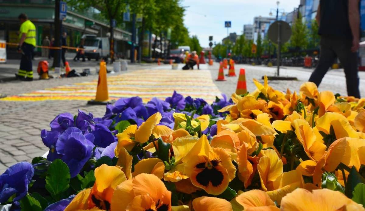 Räsymaton värit sopivat kukkaistutuksiin.
