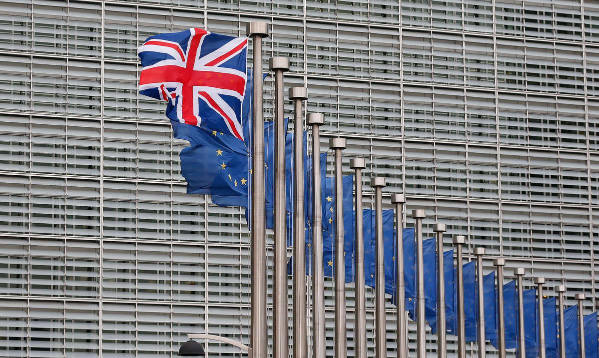 Brysselissä liehuvia lippuja.