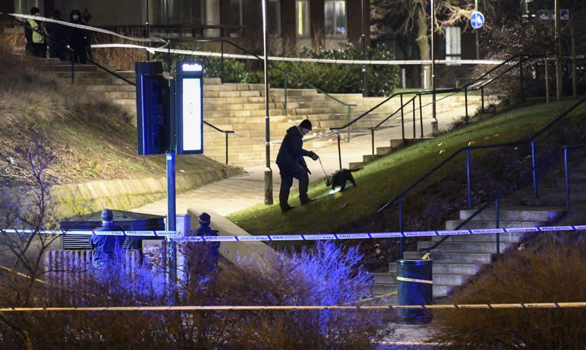 Poliisi ja koira tutkivat eristettyä aluetta
