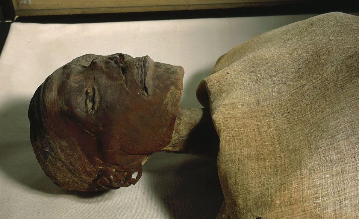 Muumion pää. Ruumis on peitelty kankaalla.