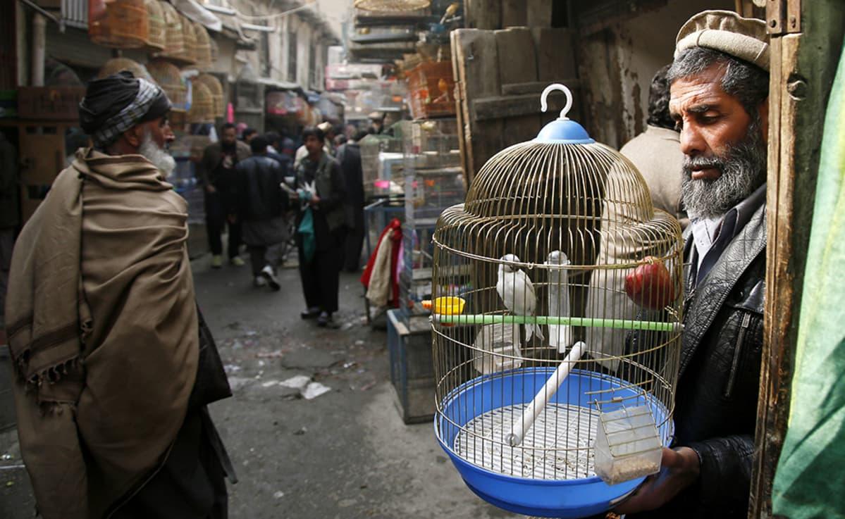 Kabulin markkinoita.