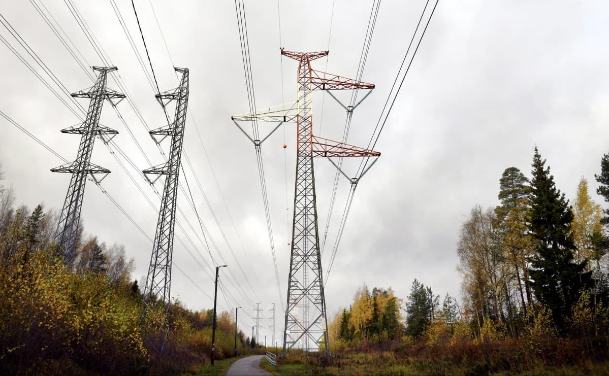 Sähkölinjoja Kuusikossa Vantaalla.