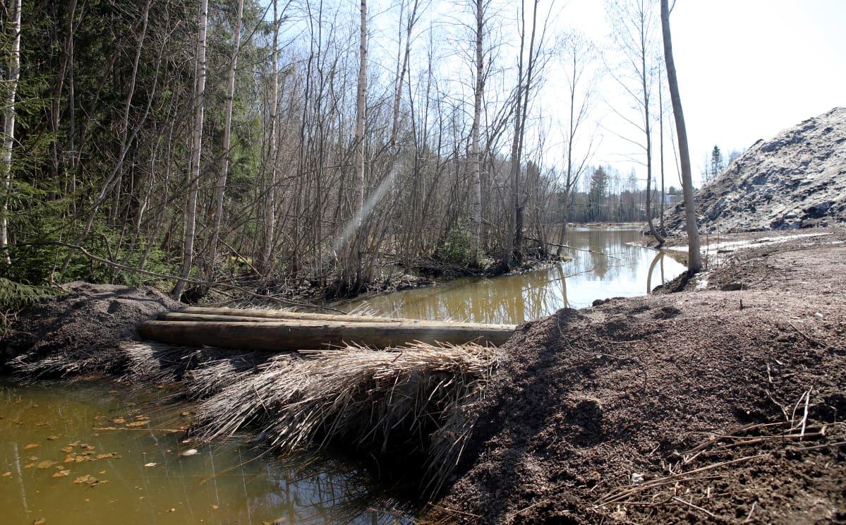 järviruokoja ladottu ojaan suodattamaan sulamisvesiä