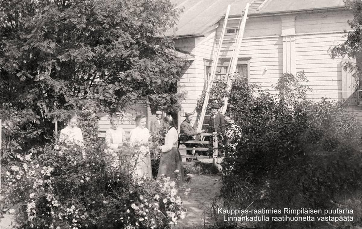 Nuoret naiset juttelevat kauppias-raatimies Rimpiläisen puutarhassa vanhassa mustavalkoisessa kuvassa.