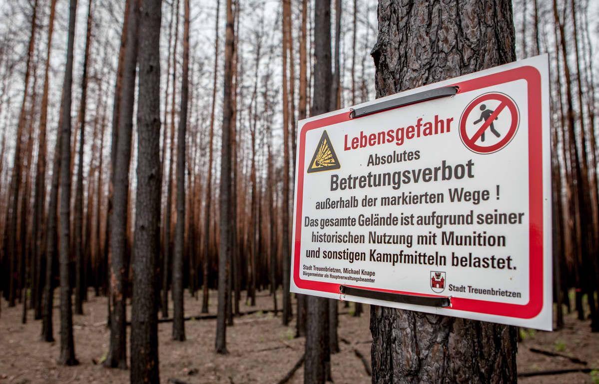 Vuosi sitten tapahtuneen metsäpalon sammutustöitä vaikeutti se, että alueella on yhä paljon ammuksia levällään toisen maailmansodan jäljiltä. Kyltti varoittaa metsässä liikkujia mahdollisesta vaarasta.