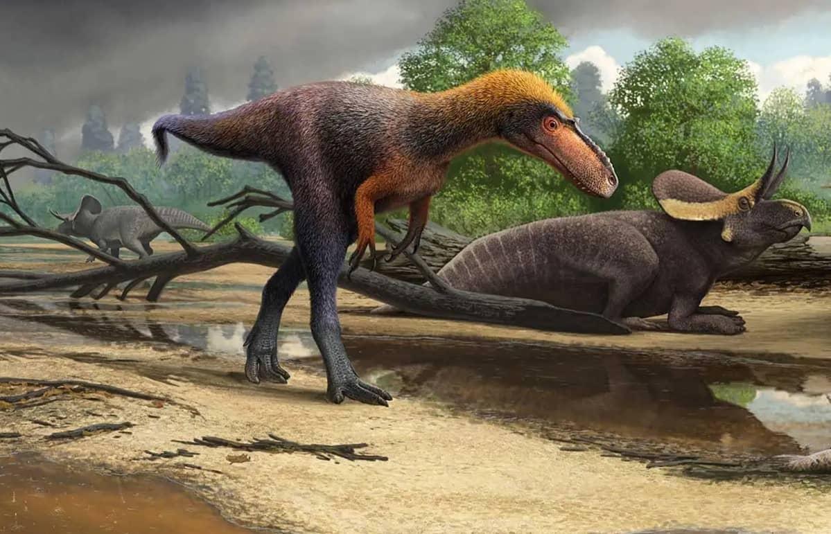 Ohuen turkin peittämä dinosaurus kävelee kahdella jalalla kahden muun dinosauruksen ohi.