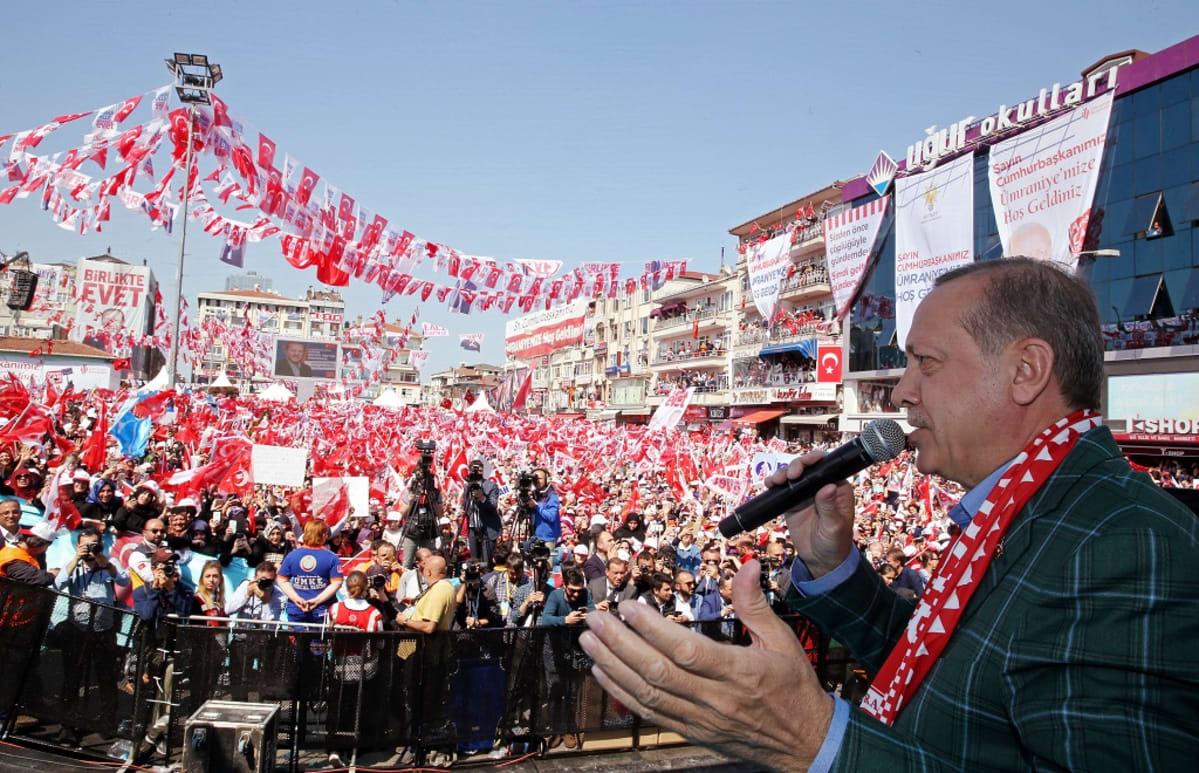 Recep Tayyip Erdoğan on kuvan oikeassa laidassa etualalla. Hän puhuu oikeassa kädessään olevaan mikrofoniin ja elehtii vasemmalla kädellään. Hänellä on tumma ruutukuvioitu pikkutakki ja puolueensa - sekä Turkin lipun - väreissä oleva kaulaliina. Yleisömeressä heiluu suuri määrä Erdoğanin puolueen lippuja.