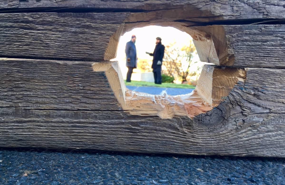 Ilkka Sariola ja Kai Sadinmaa toivat jalkapuunsa Seinäjoelle Laukeuden ristin juurelle.