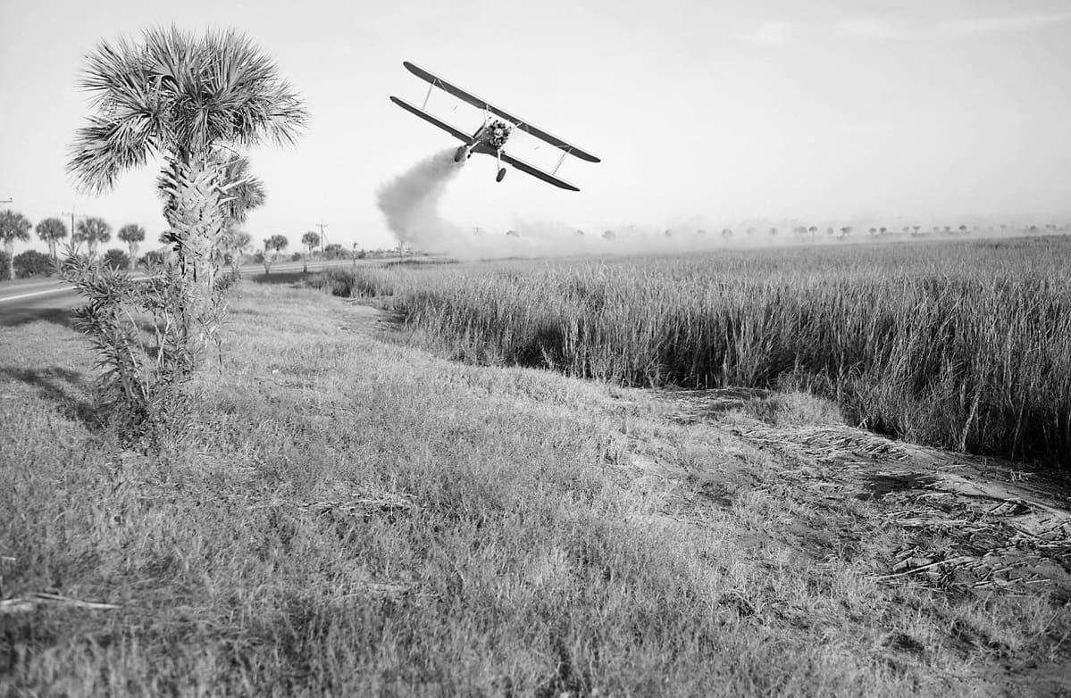 DDT:tä ruiskutetaan lentokoneesta pellolle Yhdysvalloissa.