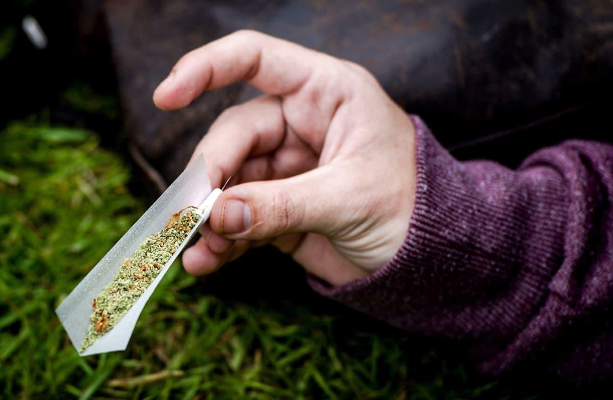 Kannabissätkä.