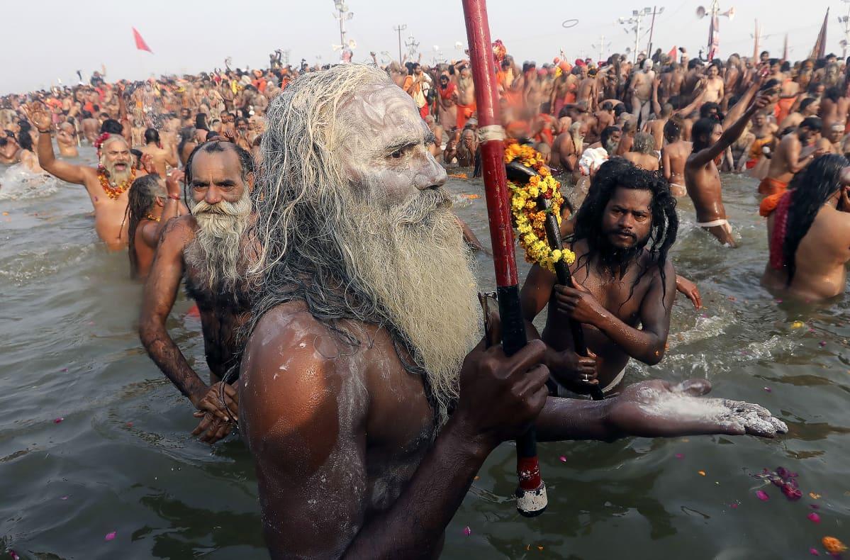 Kumbh Mela -festivaalin juhlijoita kylpemässä Sangamissa.