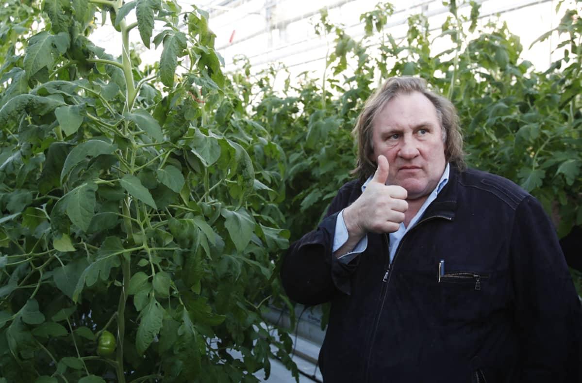 Ranskalaisnäyttelijä Gerard Depardieu vieraili Saranskissa sijaitsevassa kasvihuoneessa 23. helmikuuta.