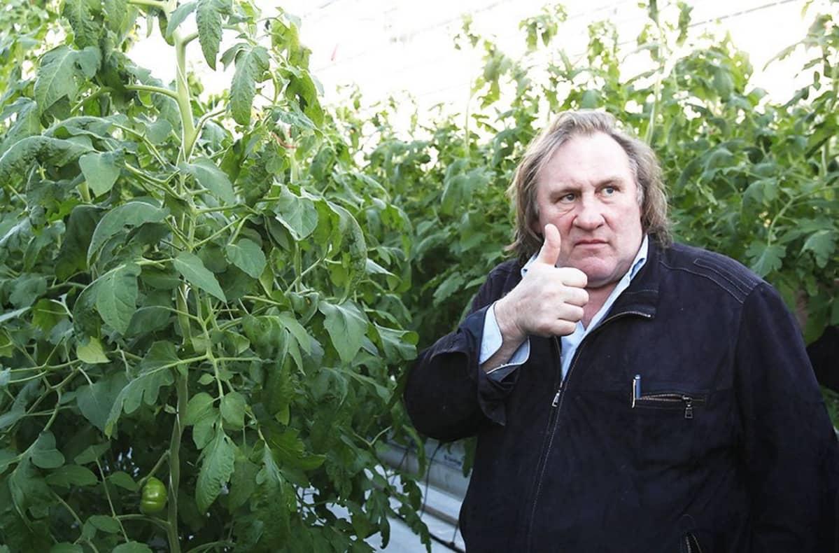 Ranskalaisnäyttelijä Gerard Depardieu valokuvattuna Venäjällä helmikuussa 2013.