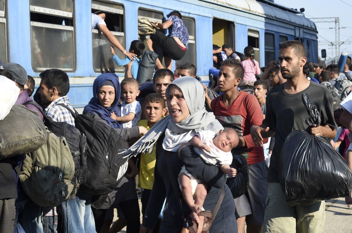 Pakolaisia matkalla Serbian rajalle Makedoniassa vuonna 2015