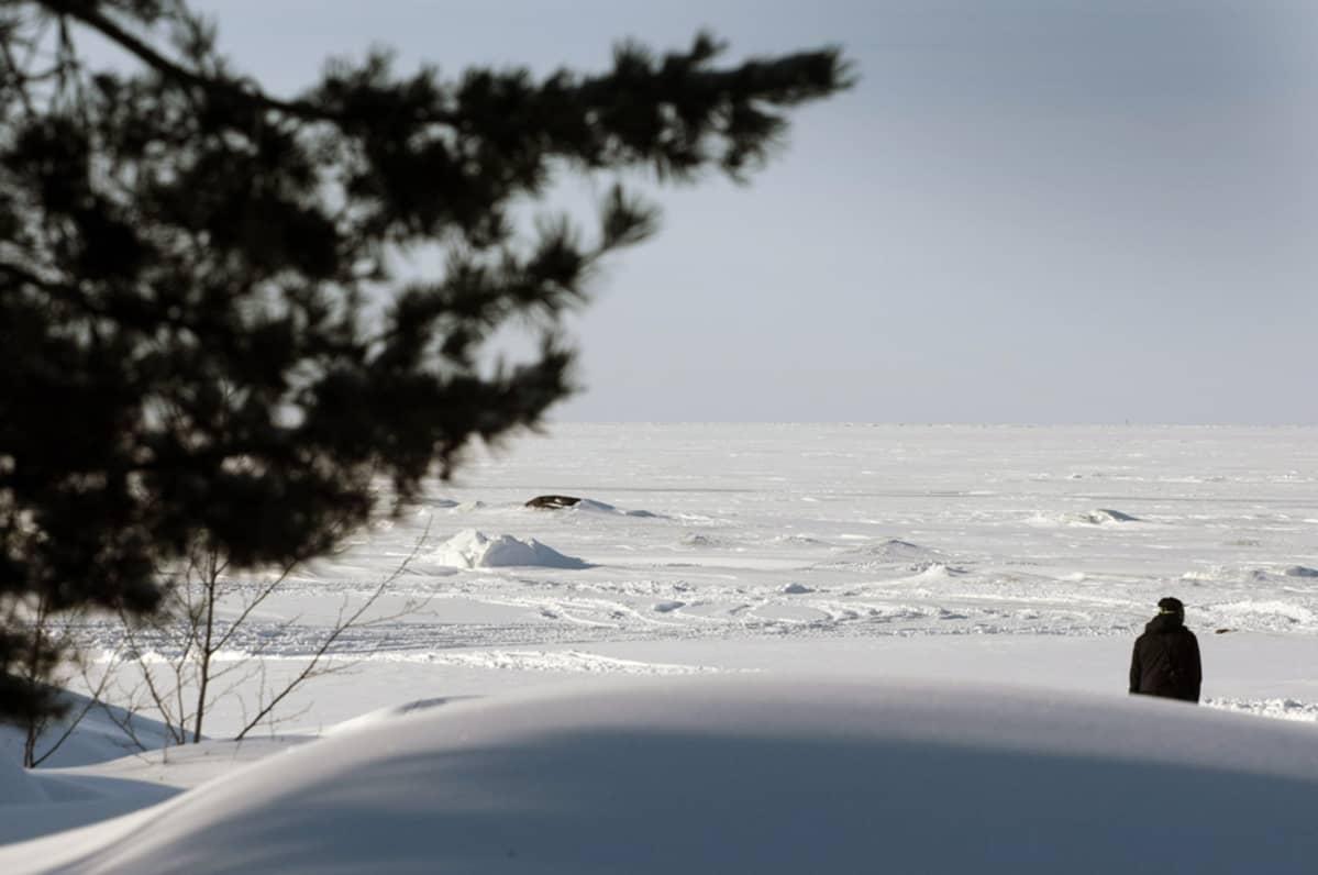 Fennovoiman ydinvoimalan suunniteltu sijoituspaikka Hanhikiven niemellä 24. helmikuuta 2013.