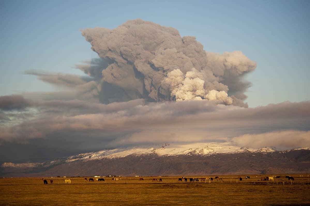 Arkistokuva kevään 2010 tulivuorenpurkauksesta Islannissa.