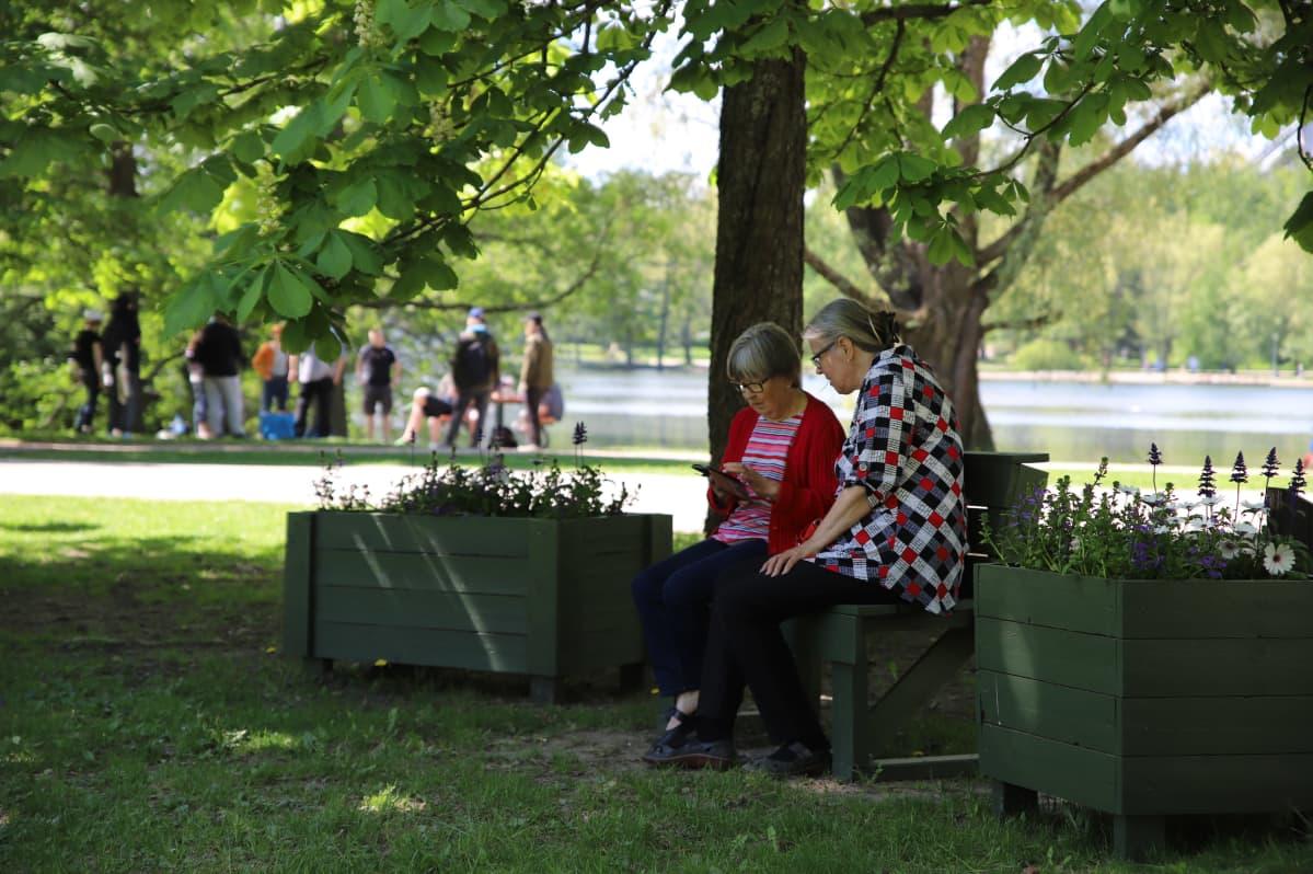 Pariskunta istuu puiston penkillä Pikku-Vesijärven rannassa