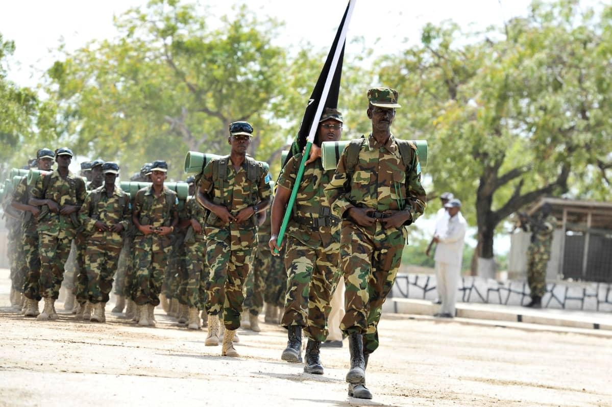 Osasto sotilaita marssii tiellä. Heillä on maastopuvut. Yksi sotilaista kantaa lippua-