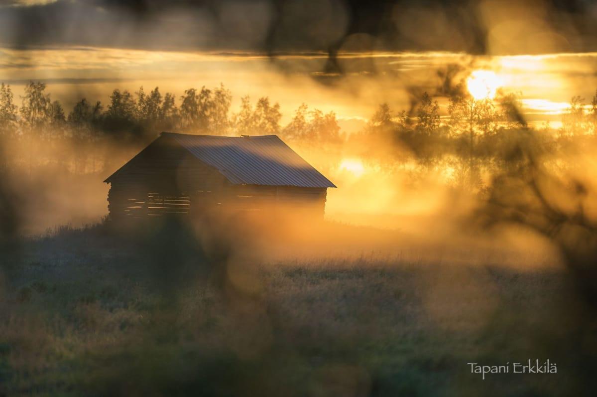 Lato ja nouseva aurinko