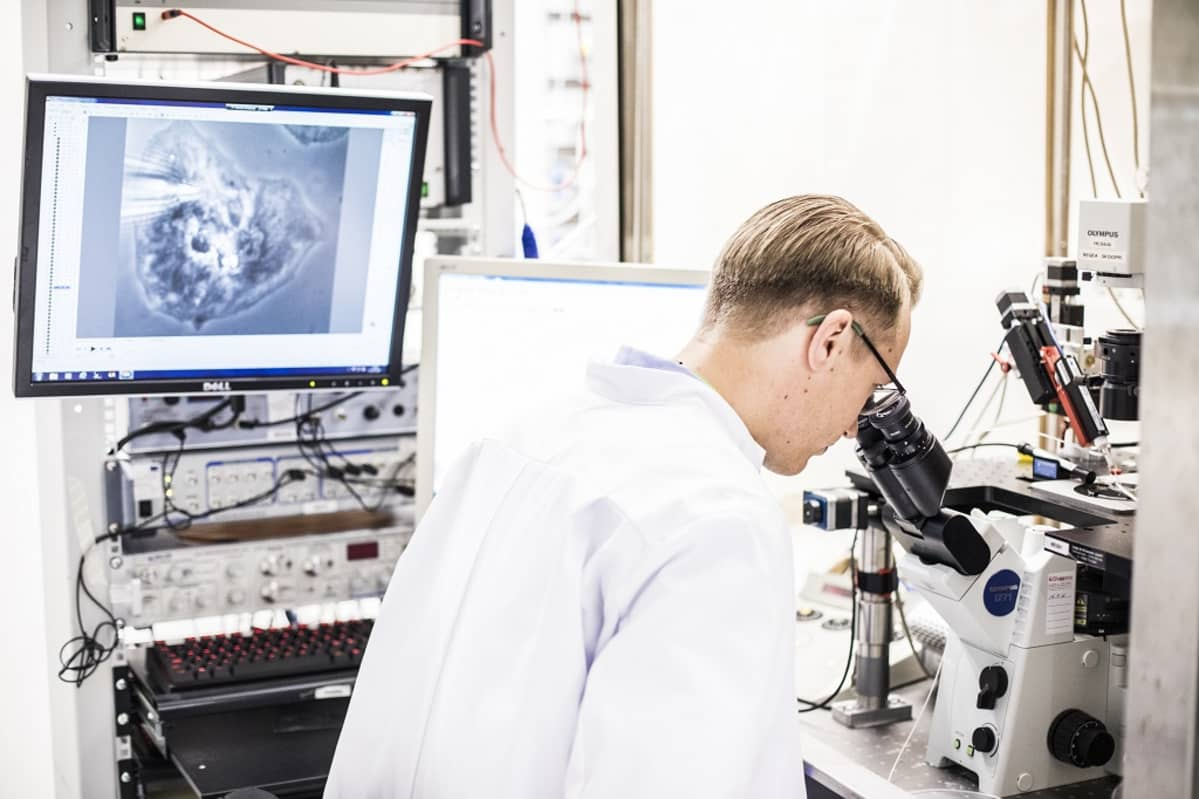 BioMaljaTutkimus, kantasolu, BioMediTech