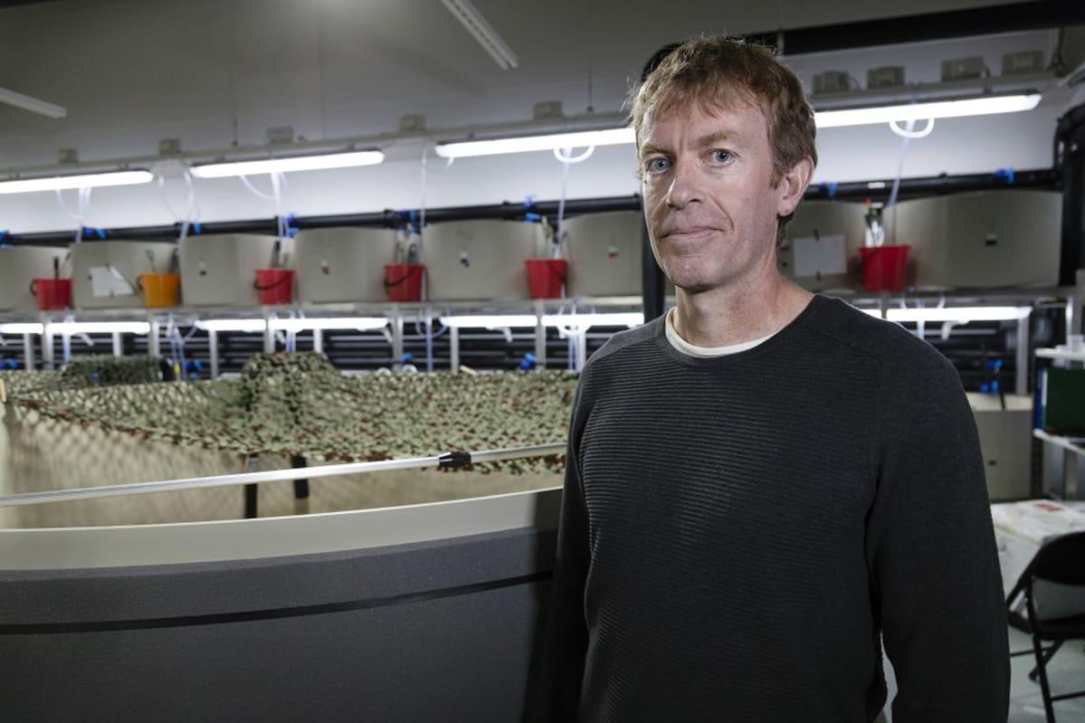 Craig Primmer, akatemiaprofessori