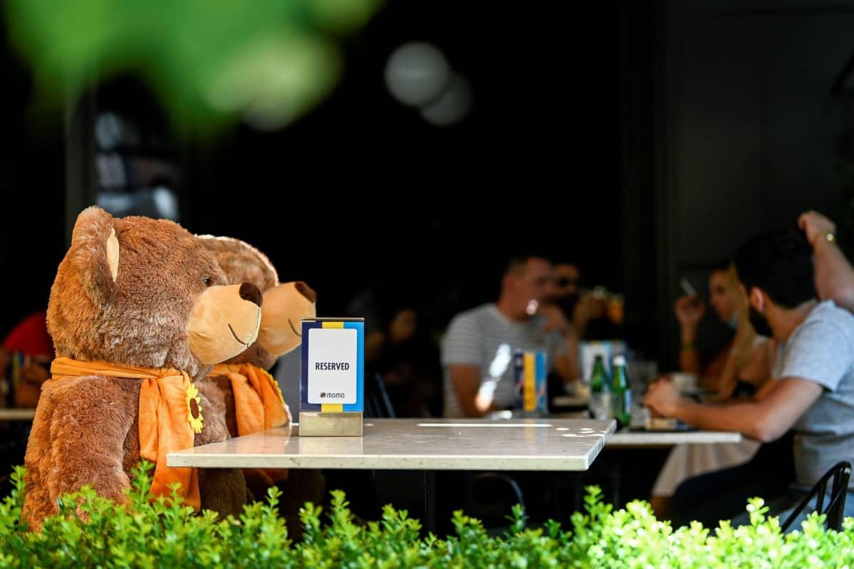 Kaksi nallekarhua piti paikkoja varattuna ravintolassa, jotta turvavälit säilyisivät Pristinassa heinäkuussa.