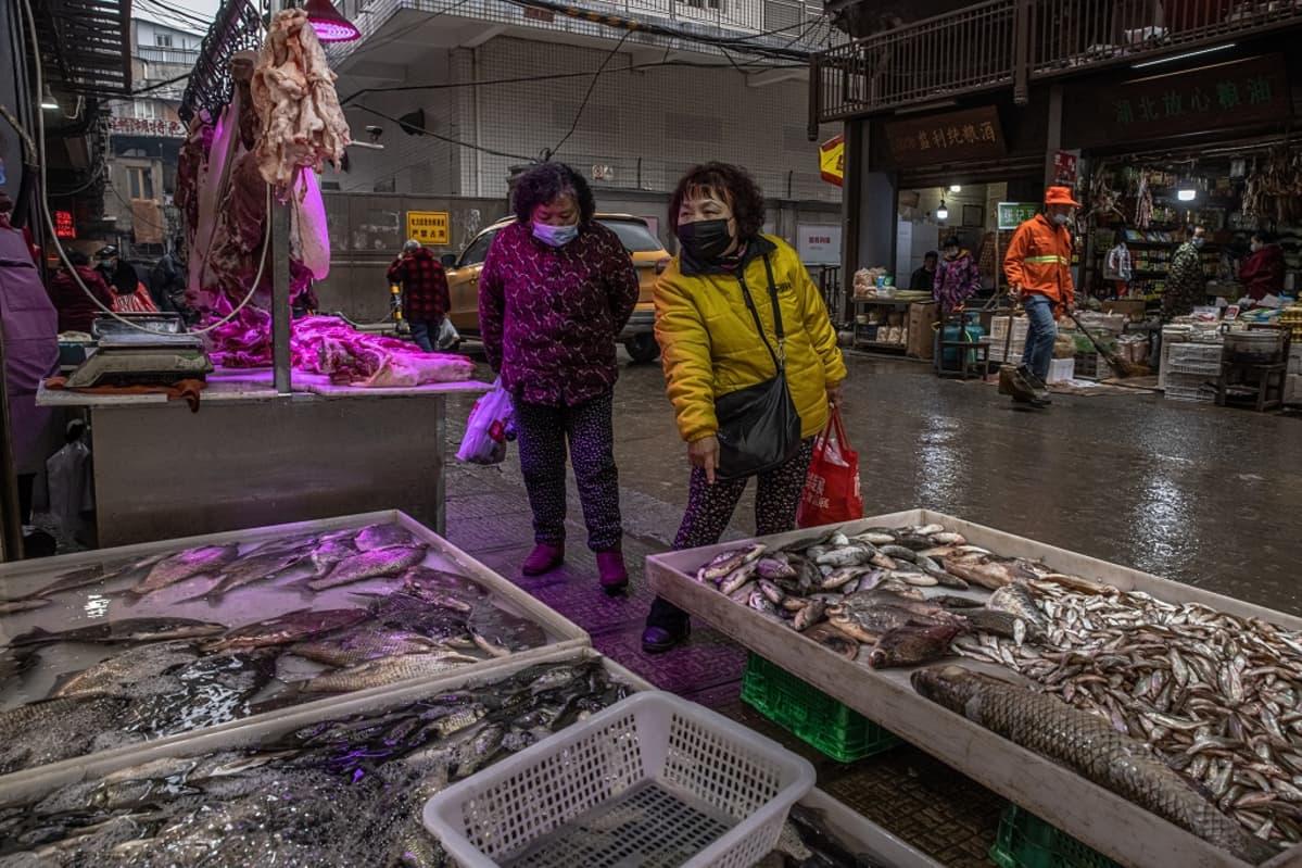 Kaksi kiinalaisnaista tutkii laatikoissa olevia kaloja.