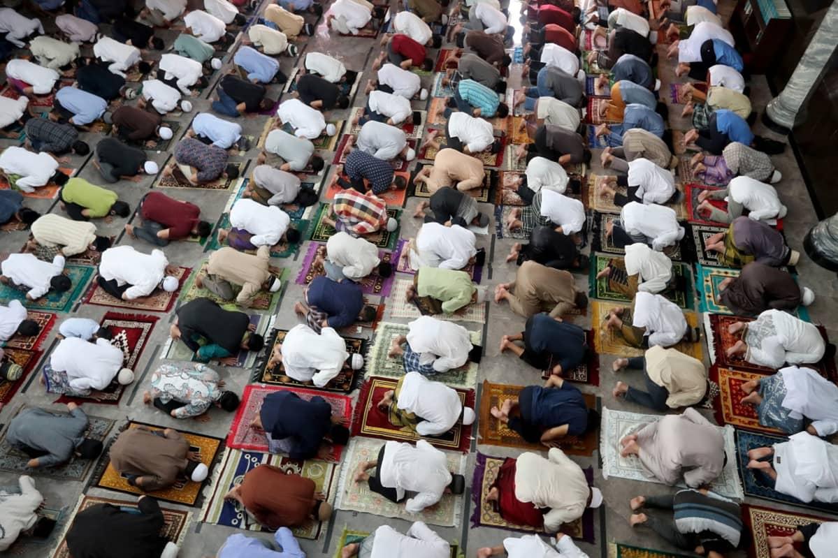 Kuvassa miehiä polvillaan rukoilemassa moskeijassa.