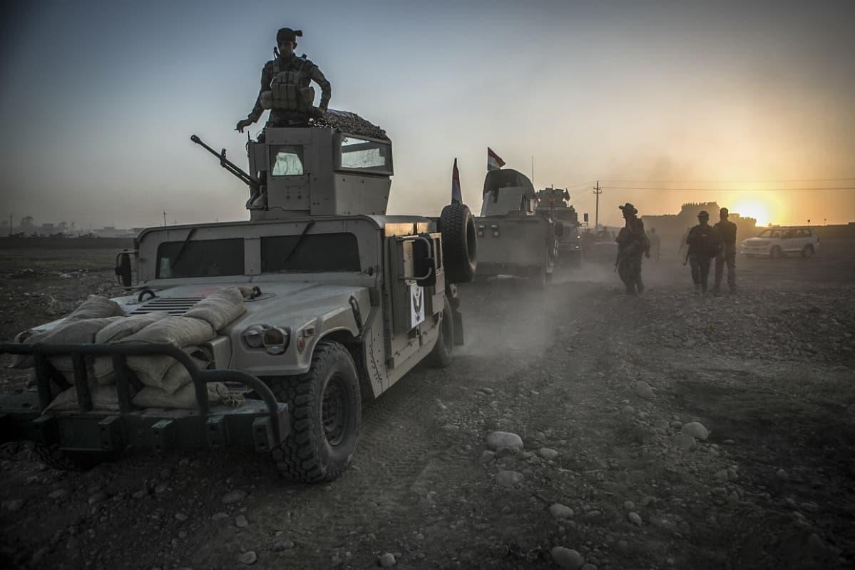 Miehistönkuljetusvaunuja, sotilaita seisoo vaunujen päällä.
