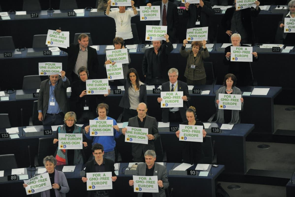 Europarlamentaarikot vastutivat geenimanipuloituja elintarvikkeita maaliskuussa 2010.