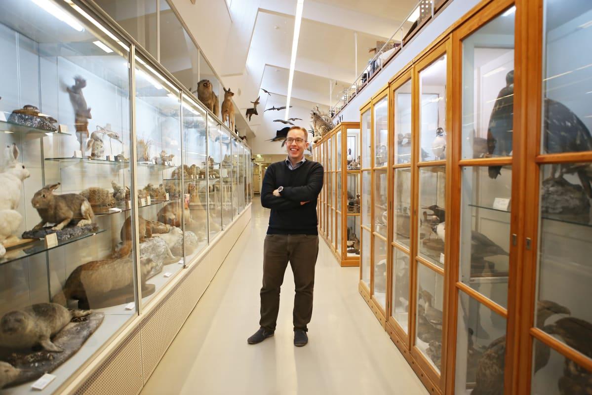 Professori Sääksjärvi seisoo Turun yliopiston eläinmuseon käytävällä. Vitriineissä on täytettyjä eläimiä.
