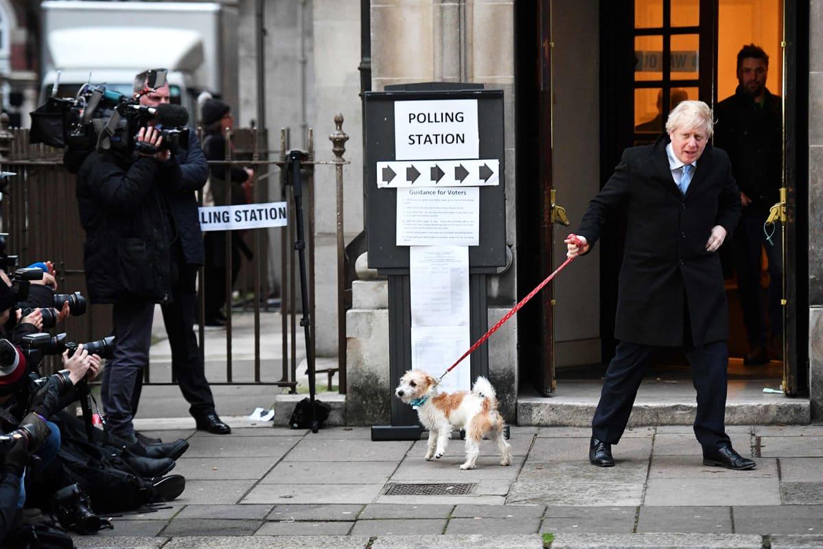 Pääministeri Boris Johnson kävi äänestämässä Dilyn-koiransa kanssa Lontoossa.