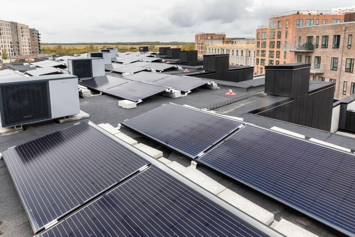 Aurinkopaneeleja kööpenhaminalaistalon katolla