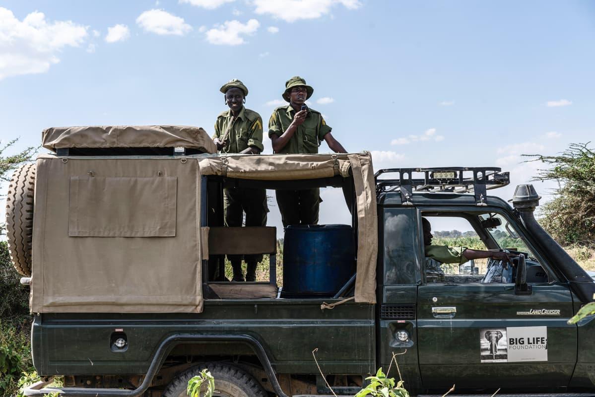 Tiukentuneen valvonnan ansiosta salametsästys norsunluun takia on vähentynyt Big Life Kenyan valvomilla alueilla huimasti. Jopa 90 prosentissa tapauksista tekijä saadaan kiinni ja norsunluu takavarikoitua.