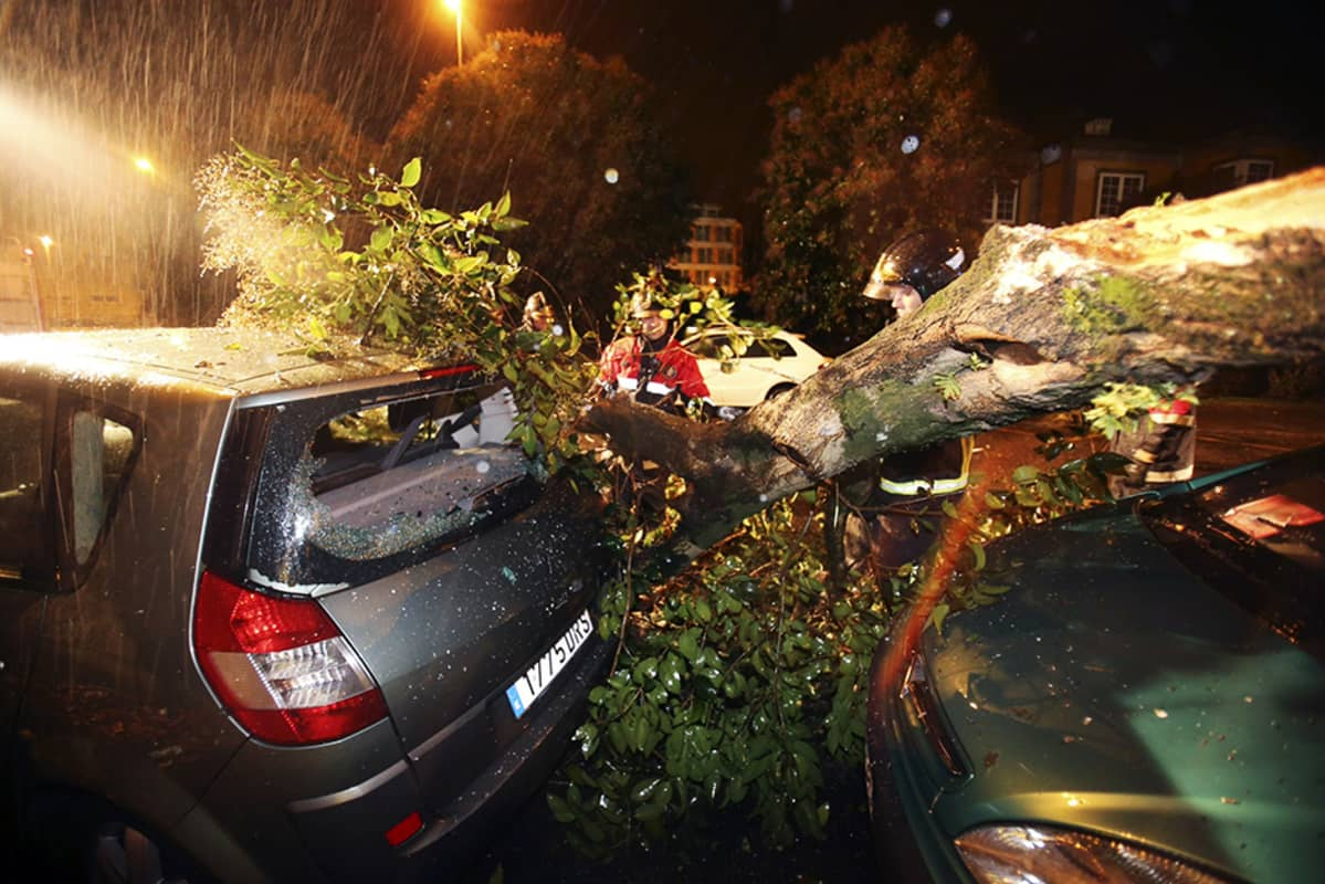 Myrskyn kaatama puu romutti autoja Vigossa, Luoteis-Espanjassa, varhain joulukuun 24. päivän aamuna.