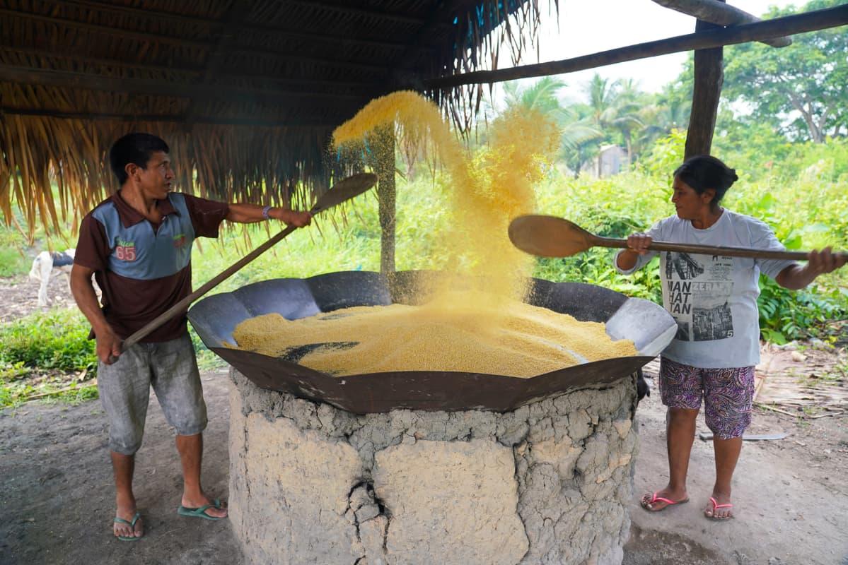 Maniokkijauhon tekoa Sawré Muybun kylässä Brasiliassa.