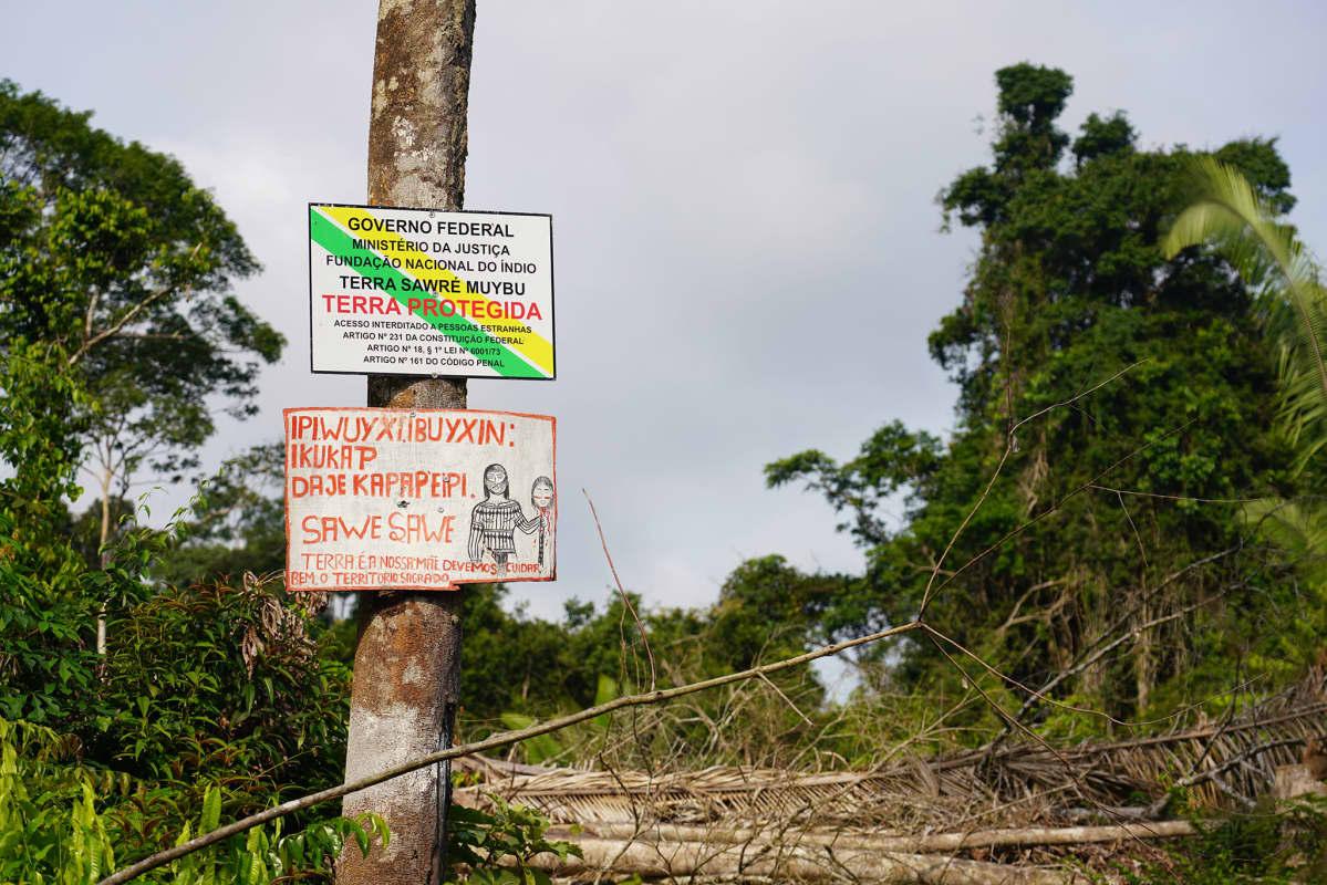 Mundurukut ovat merkinneet varoituskylteillä Daje Kapap Eipi -nimisen alueensa rajat.