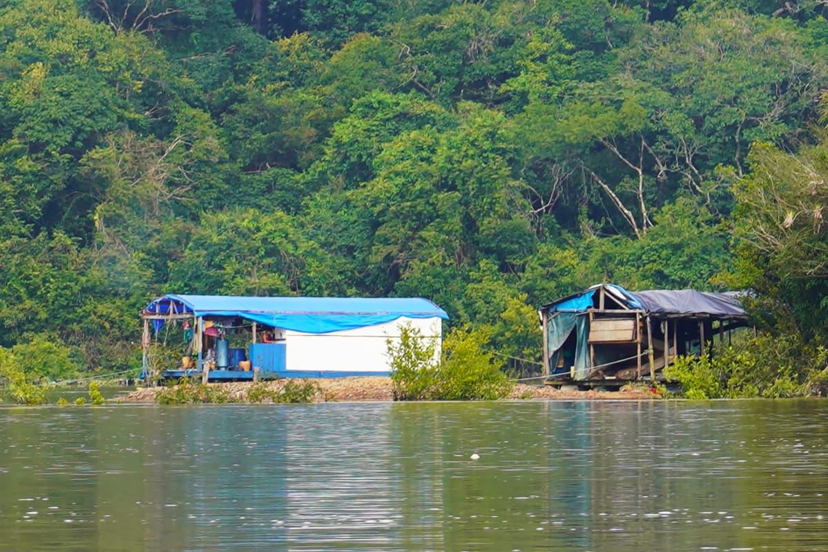 Kullankaivajien lauttoja Jamanxim-joella Brasiliassa.