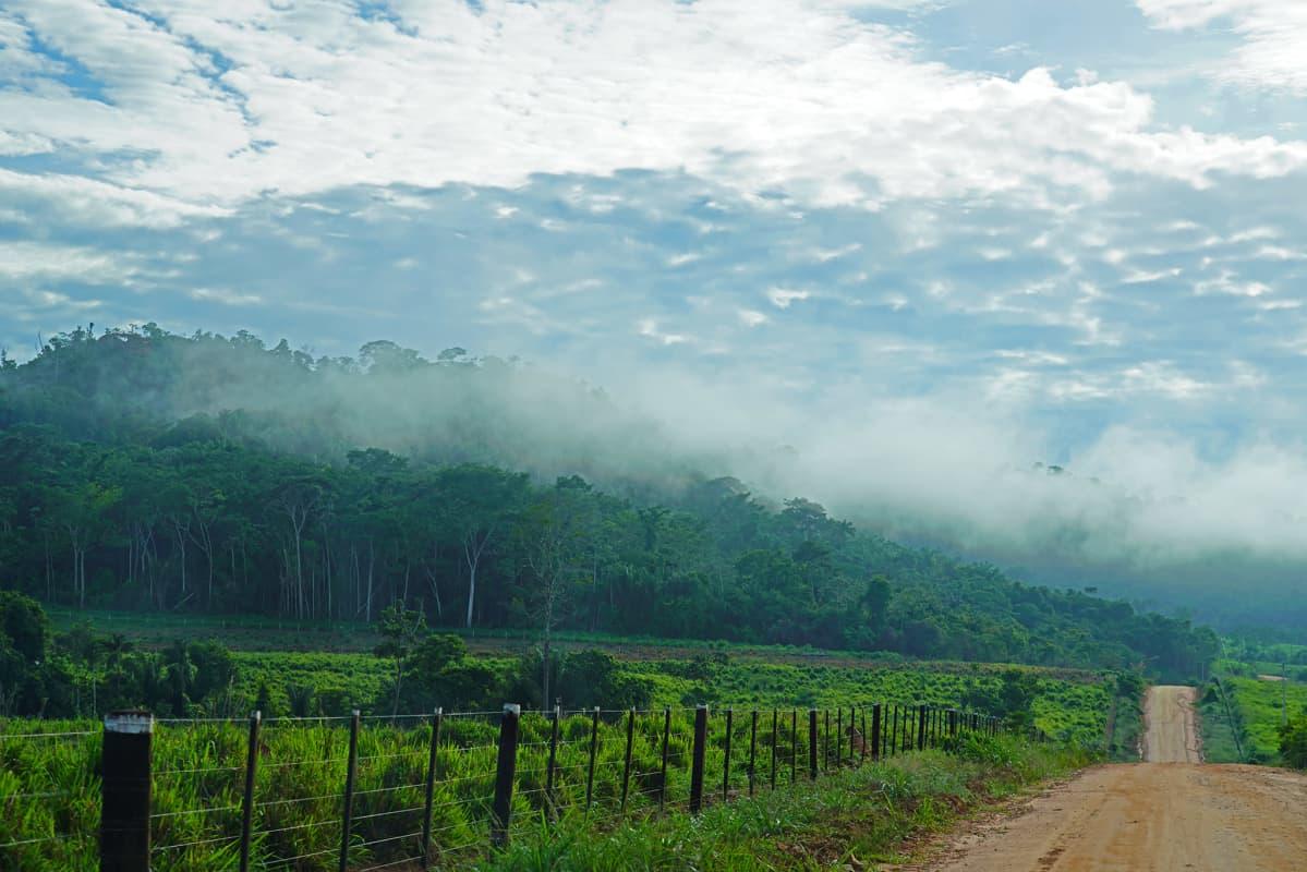 Soratie kultakaivosalueella Amazonin alueen sademetsässä