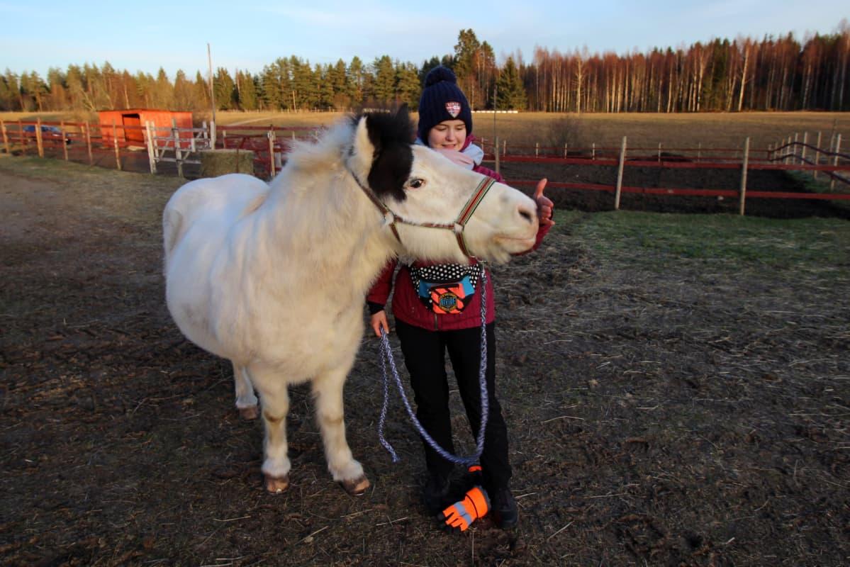 Hevonen koskettaa Mila Tantun kättä turvallaan.