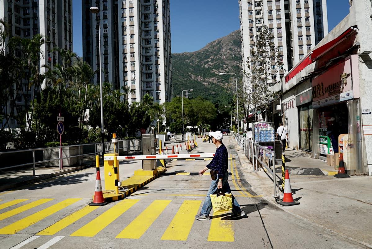 Hong Yingin mukaan vuoret ovat Hongkongissa erilaisia kuin mantereella. Se on hänen esimmäisiä muistojaan Hongkongista.