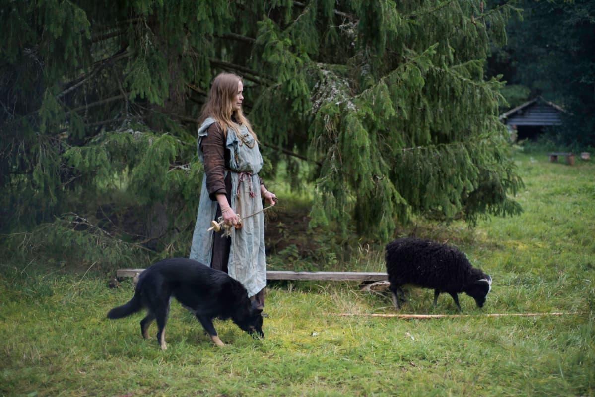 Nainen, koira ja lammas