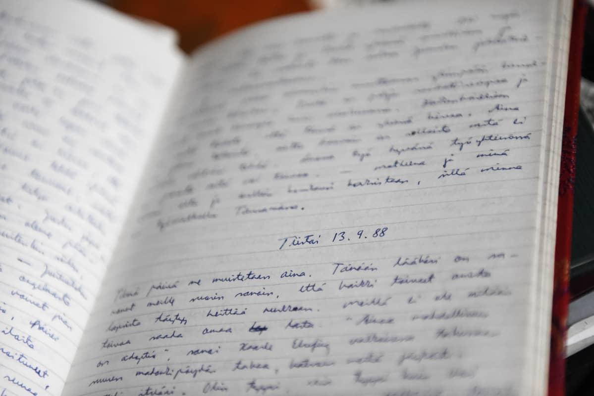 Yksityiskohta Pirren päiväkirjasta.