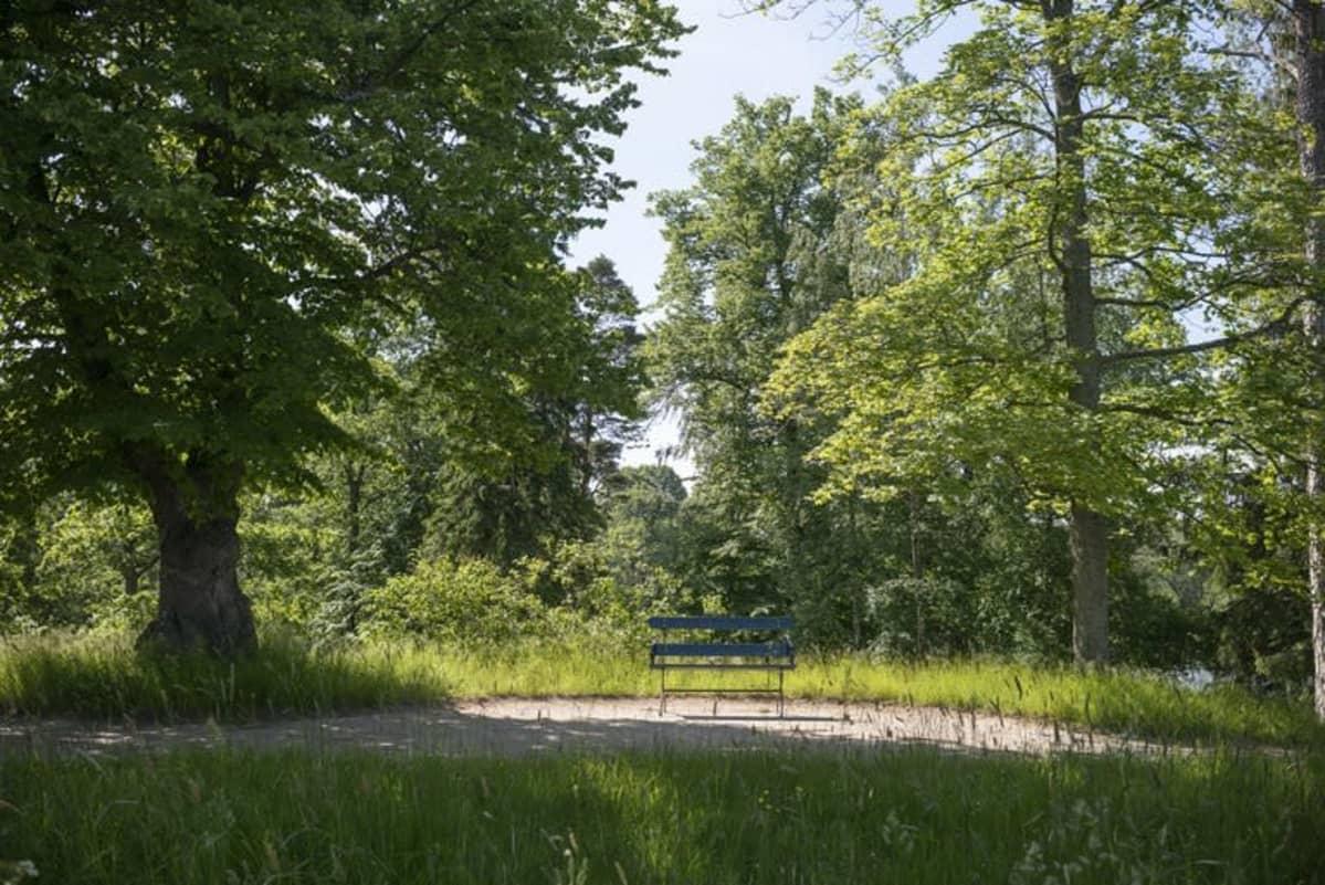 Tullisaaren kartanopuisto Helsingissä