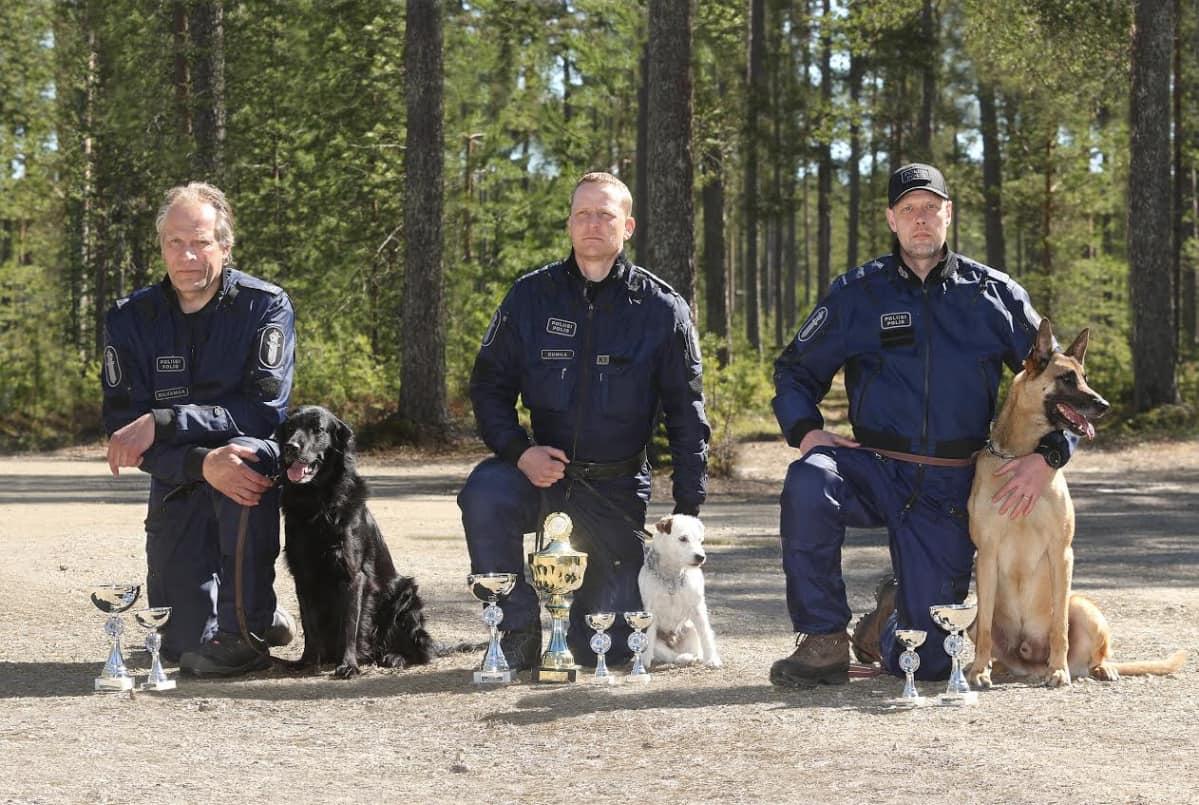 Poliisin huumekoirien SM-kisan voittajakolmikko 2016.