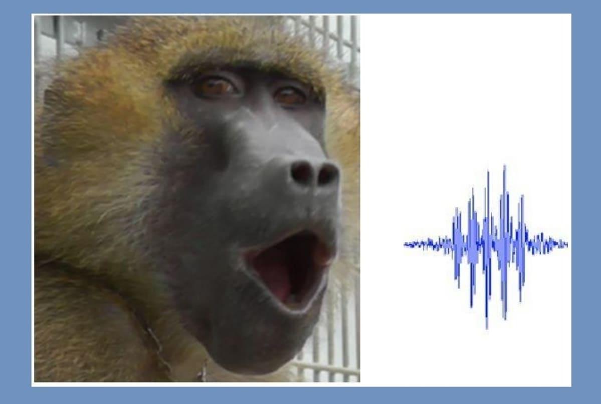 Sfinksipaviaani suu auki, vieressä äännähdys digitaalisena kuviona.