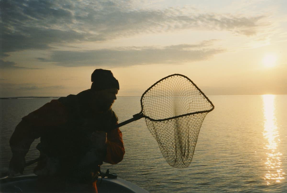 Loiri kalastaa